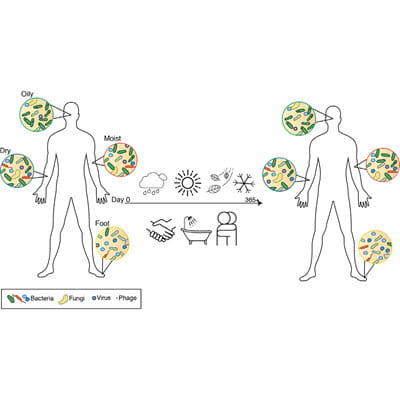 Skin Microbiome Visual Abstract