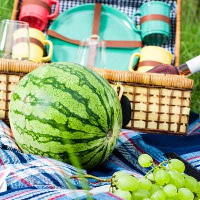 Don't Let Anything Spoil Your Summer Picnic